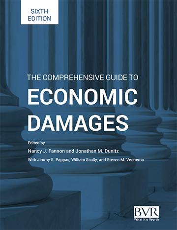 BVR 6th edition of The Comprehensive Guide to Economic Damages